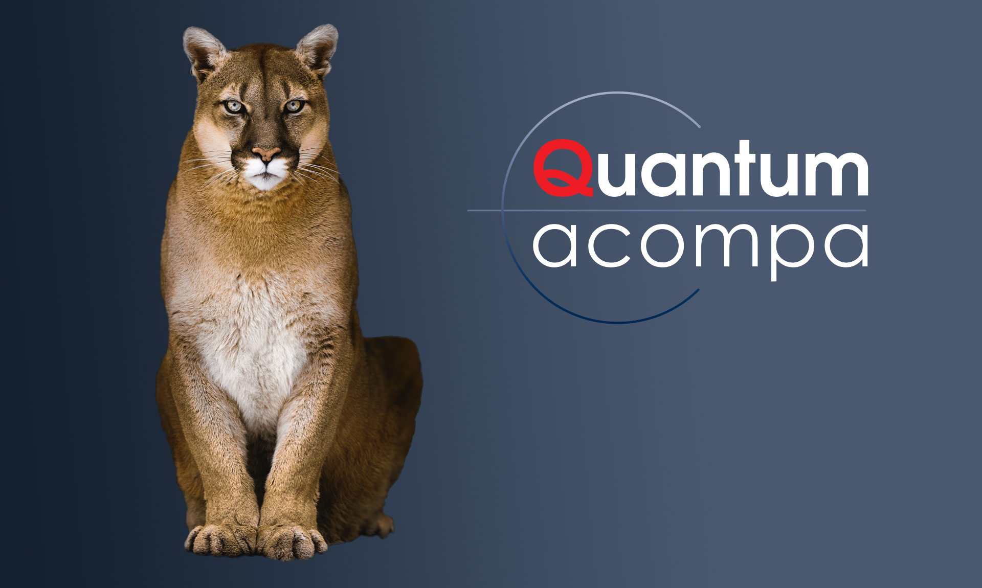 Quantum acompa header mobile
